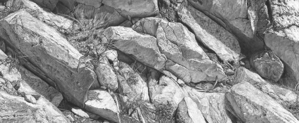 Original pencil drawing of chipmunks running among the rocks by Patrick Gnan.